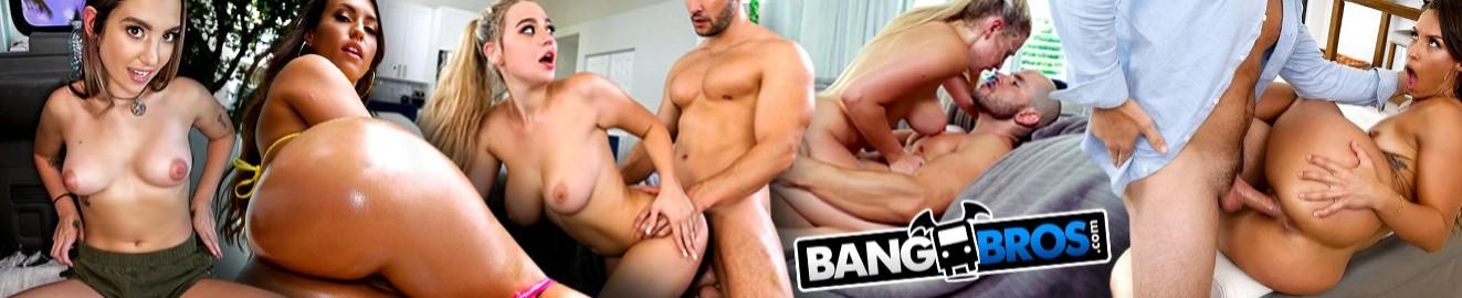 Bang Bros Network cover