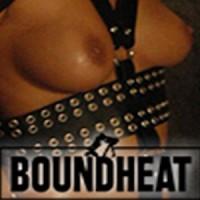 Bound Heat Profile Picture