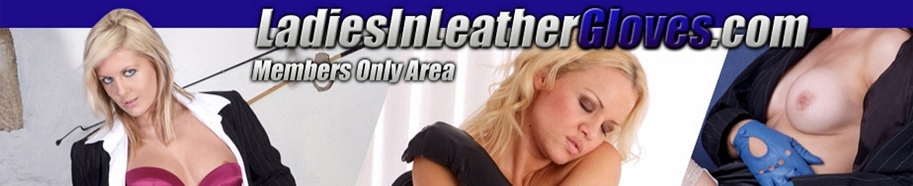 Ladies In Leather Gloves cover