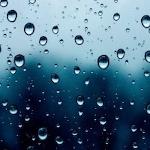 raincoast