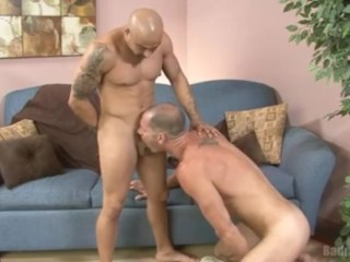 Cole Streets Swallows Aris Cock