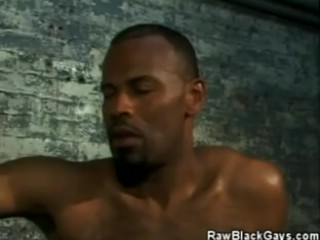 Busty Lesbian Witches Porn Videos Huge Tit Lesbian Milfs...