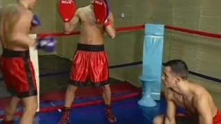 Boxers Having Sex Oral blowjob
