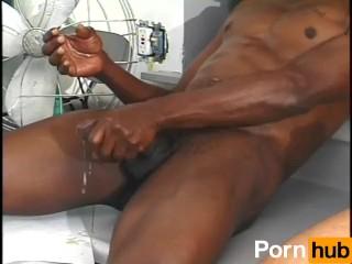Florida Porn Videos Biggest Porn Site In Florida