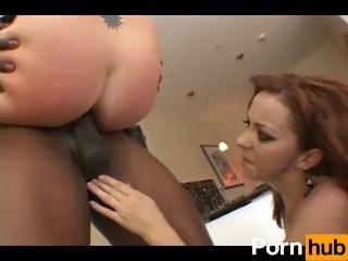 Noreen Lily Bulbs Aka Naked Ladies Amaryllis Belladonna the Naked Lady Bulb Nurseries Online