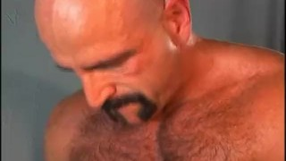 Bear  fuzz scene bear men