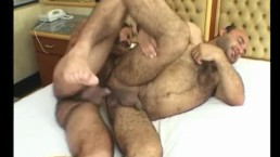 Two hairy dudes having fun in bed