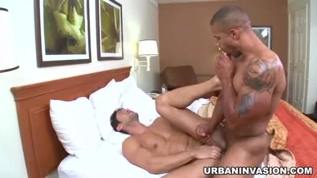 Pornhub gay sex