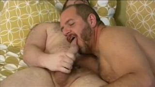 Bears Messing Around Fist bj