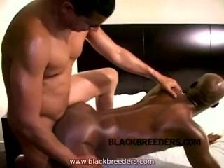 HQ BOOBS Lactating: 3722 videos Big Tits Tube Fake Tits Sucking Dicke
