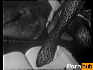 15 Best Sick fucks images in 2015 True crime, Evil people, Serial Dad Fucks Young Daughter Porn