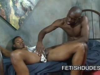 Www Perversious Sex Sexfree Porn Videos Gonzo XXX Movies