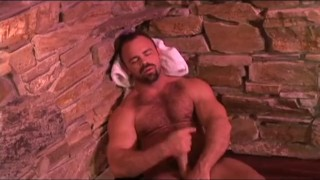 Erotic Spotlight Series 3 Ass style