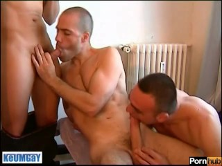 2 handsome males suking the photographer's cock in spite of him !