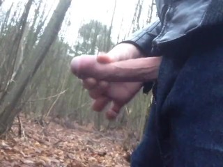 Walking with my penis out of my pants