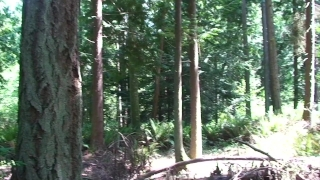 Anal sex with my younger stepbrother in the woods - Erin Electra