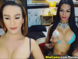 Slutty Shemale Gives Hot Blowjob