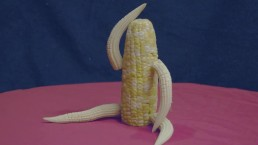 a-maize-ing hardcore action