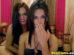 Filipina Shemale Sucks Cock and Gets Anal
