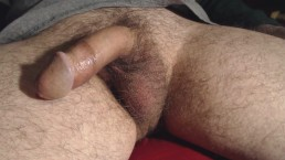 No. 154 - A VERY Thick Load from 6 Days [3-25-14]
