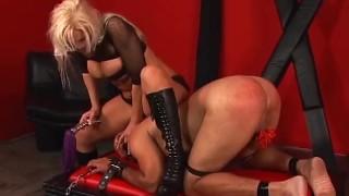 Kinky blonde stunner Nikki Hunter pleasures her man's fat shaft
