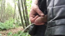 flaccid penis - piss