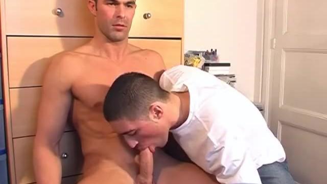 gay porn twink fucks top