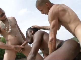 Porno A La Cam Web Cam Erotique