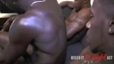 Blacks manhandling white bitch boys