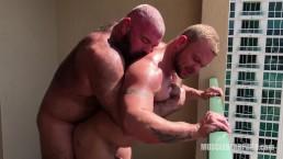 Bear Pounding