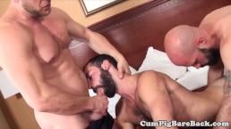 Bearded bears bareback and blow in threesome