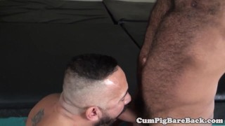 Mature tight tattooed bear ass barebacking mature unsaddled