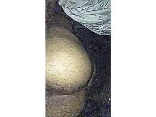 Big butt freak