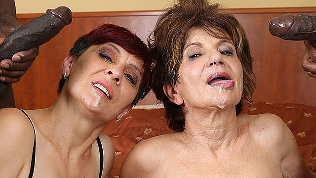 Black porn brtal - Grannies hardcore fucked interracial porn with old women loving black cocks