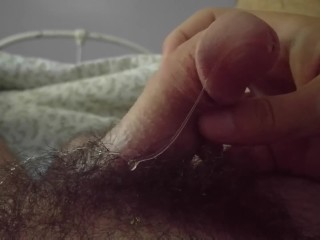 Midday Dipping Precum Session