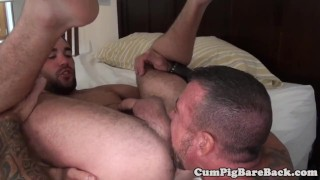 A tight grey assfucking butthole wolf anal style