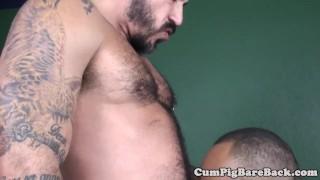 Muscular bear black wolf a assfucking big jerking