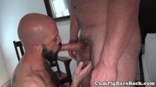 Assfucked dong by bears stud hairy fat bald gay