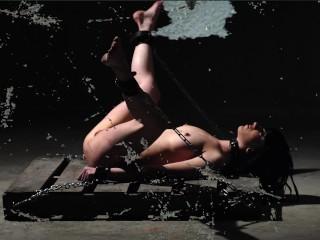 Alexis taylor bondage photographs