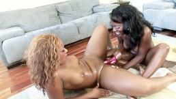Two Big Tit Lesbian Ebony Sluts Fucked Each Other With Toys
