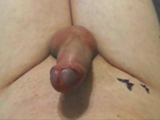 Masturbation & Cum 4 Butterfly