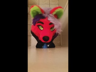 FEMBOY FOX SUCKS LION DONG
