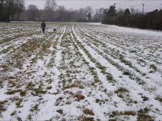 Snow Fuck & Cum Gargle