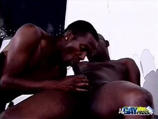 Black Studs Oral Threesome