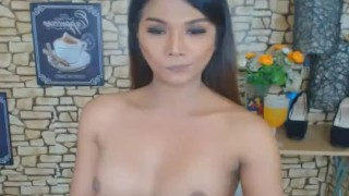 Wild Asian Shemale Jerks on her Big Hard Dick