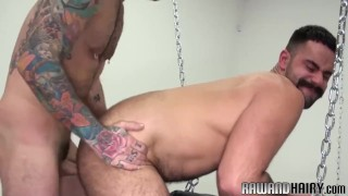 Mature anally bear young pounding otter cockriding hairyandraw