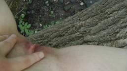 Peeing From a Fallen Tree in a Public Park