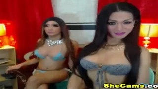 Two Shemale Hottie is Horny and Playful live on cam Casting
