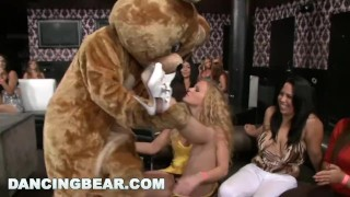 DANCING BEAR - Let Me Tell You About A Crazy Party Full Of Chicks Suckin' D