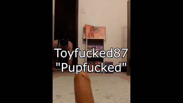Download Gratis Video  Pupfucked